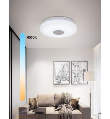 Smart Ceiling Lamp